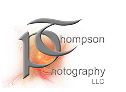 PT Photography logo